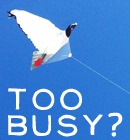 The Cult of Busyness